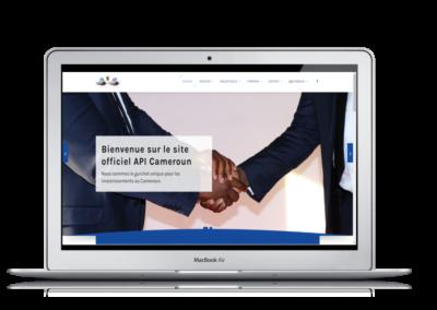 API ( Agence Promotion de l'Investissement )